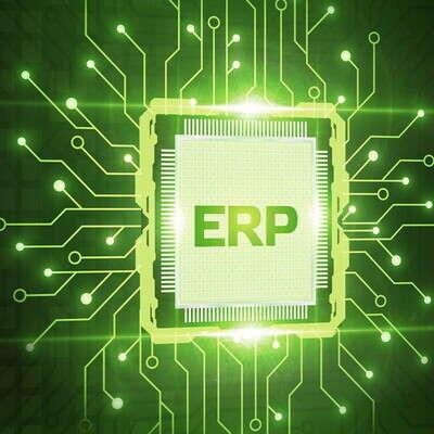 Interim Project Management ERP Implementation